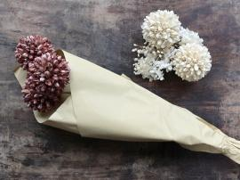 Uge 40 Fleur tørrede Snebold Blomster L60 cm taupe , hemmetshjarta.dk