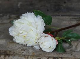 Fleur Pæon H53 cm hvid , hemmetshjarta.dk