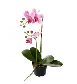 Kunstig Phalaenopsis Orkideer 45 cm , hemmetshjarta.dk