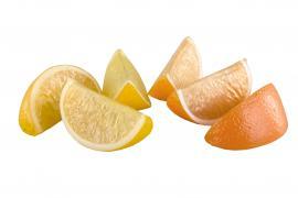 Kunstig appelsin / citronskiver 6-pak , hemmetshjarta.dk