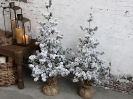 Uge 42 Fleur Cedertræ m. sne H80 cm grøn , hemmetshjarta.dk