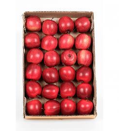 Kunstigt Æble 1st , hemmetshjarta.dk
