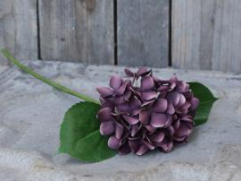 Fleur Hortensia H51 cm blomme , hemmetshjarta.dk
