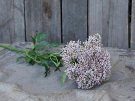 Fleur Skærmblomst H68,5 cm pudder , hemmetshjarta.dk