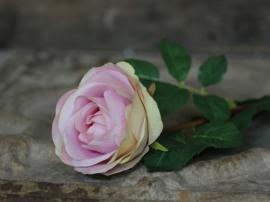 Fleur Rose  H71/Ø10 cm rosa , hemmetshjarta.dk