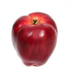 Kunstigt Æble , hemmetshjarta.dk
