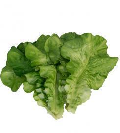 Kunstig Salatblad 6 stk , hemmetshjarta.dk