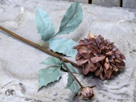 Uge 40 Fleur Dahlia L50 cm mocca , hemmetshjarta.dk