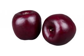 Æble Burgundy 70mm 3-pack , hemmetshjarta.dk