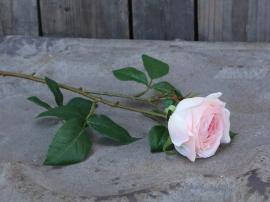 Fleur Rose H57 cm rosa , hemmetshjarta.dk