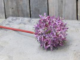 Fleur Allium H58/Ø11 cm lavendel , hemmetshjarta.dk