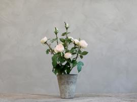 Fleur Rose i Gammel keramik Krukkete H44 cm rosa , hemmetshjarta.dk