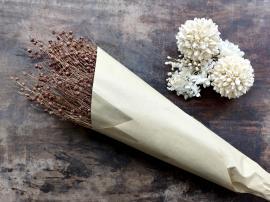 Uge 40 Fleur tørret Hørblomst L61 cm taupe , hemmetshjarta.dk