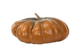 Græskar Orange.Nat Poly 34,5x18cm , hemmetshjarta.dk
