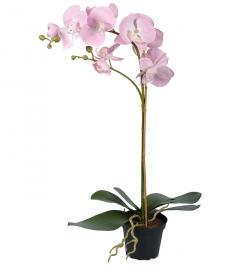 Kunstig Phalaenopsis Orkideer 60 cm , hemmetshjarta.dk