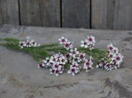 Fleur Grøftekantsblomst H65 cm hvid , hemmetshjarta.dk