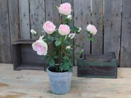 Fleur Rose i Gammel keramik Krukkete H52 cm rosa , hemmetshjarta.dk