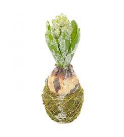 Kunstig Hyacint med snø 20 cm , hemmetshjarta.dk
