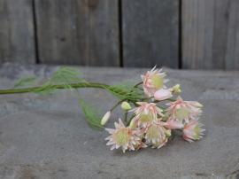 Fleur Grøftekantsblomst H51 cm rosa , hemmetshjarta.dk