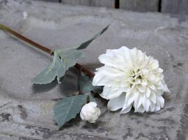 Uge 40 Fleur Dahlia L48 cm creme , hemmetshjarta.dk