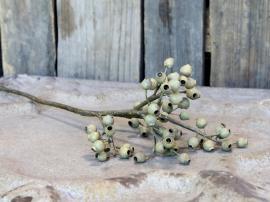 Fleur Gren m. frøkapsler H62 cm støvet grøn , hemmetshjarta.dk