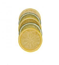 Kunstig Citrus mix 5st , hemmetshjarta.dk