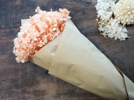 Fleur tørret Hortensia Blomst L60 cm lys koral , hemmetshjarta.dk