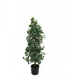 Kunstig Eucalyptus , hemmetshjarta.dk