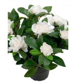 Kunstig Gardenia 25 cm , hemmetshjarta.dk